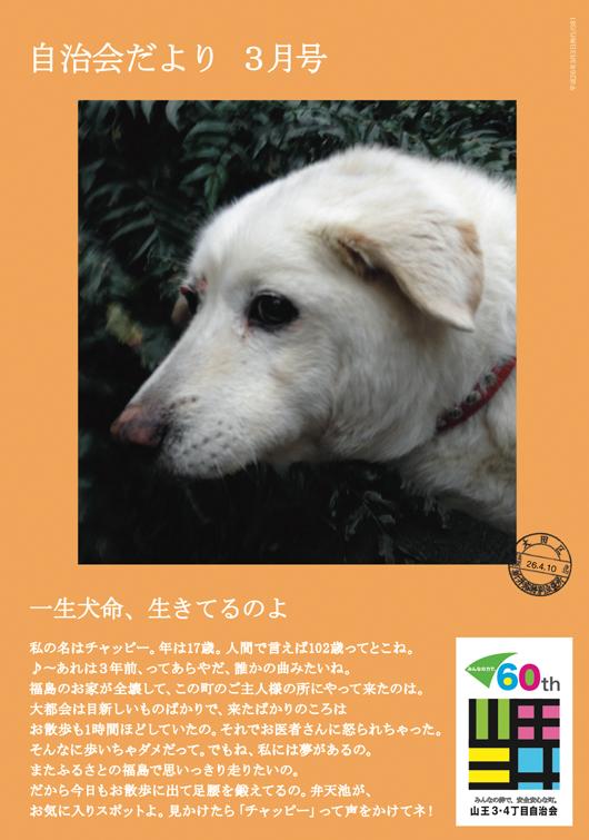 1406自治会便り/山王三四 大田区.jpg