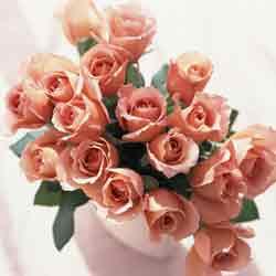 薔薇の花束.jpg