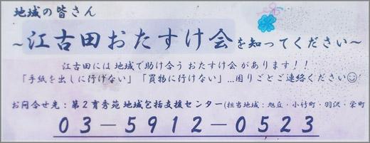 DSCN7159m02.jpg