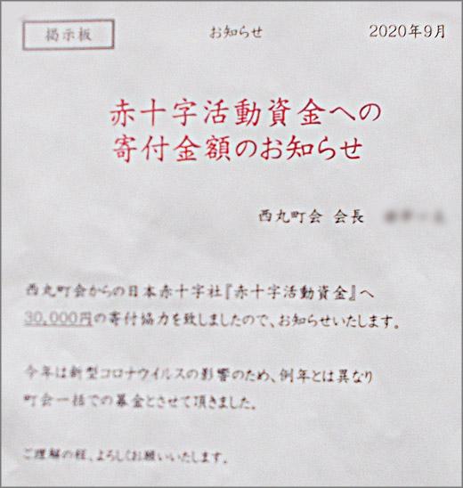 DSCN7299m29.jpg