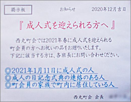 DSCN7761m11.jpg