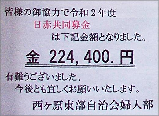 DSCN8605_01m11.jpg