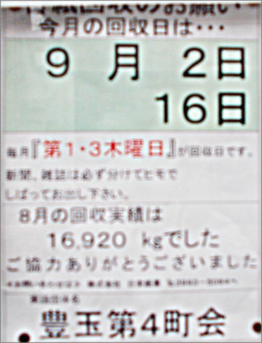 DSCN8974m16.jpg