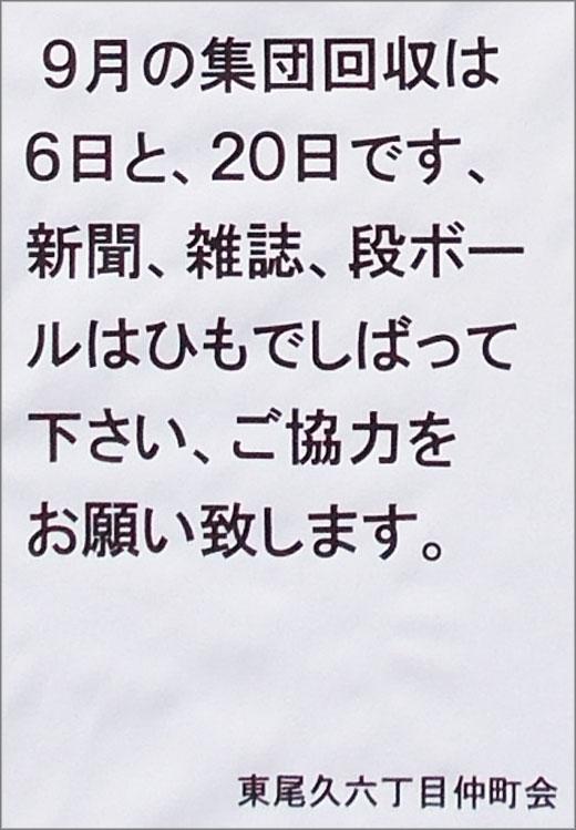 DSCN0825m5.jpg