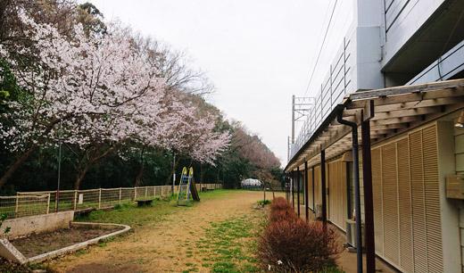 200327_izumigaoka_01.jpg