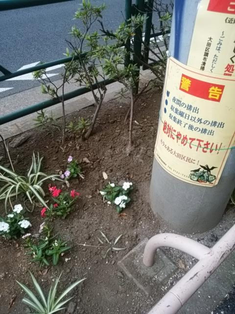20180718_kitasenzokunaka_001.jpg