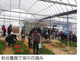 20190219_kitasuna35_01.jpg