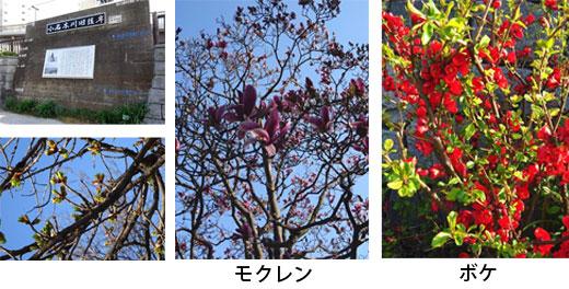 20190322_kitasuna35_06.jpg
