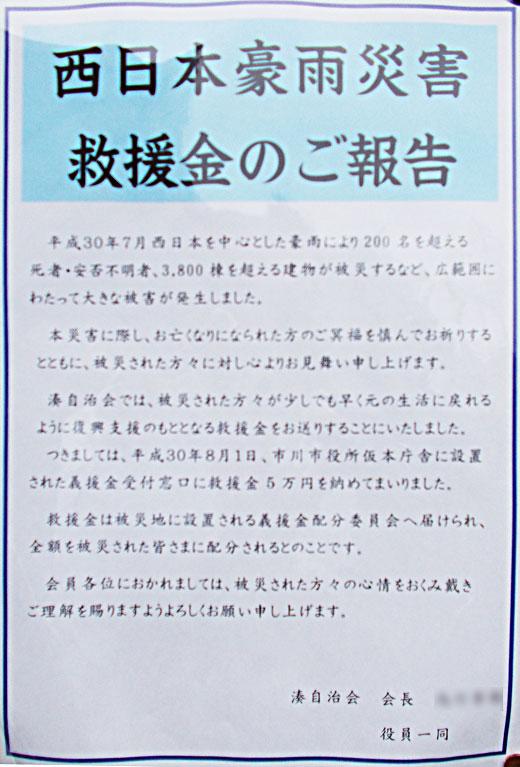 DSCN0804m29.jpg