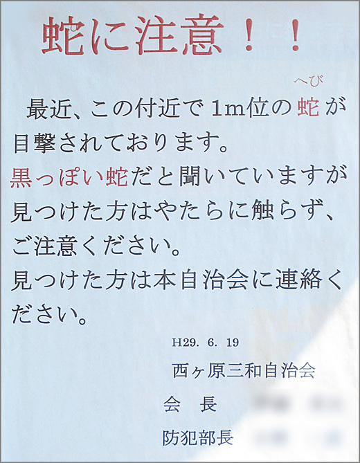 DSCN1641m.jpg