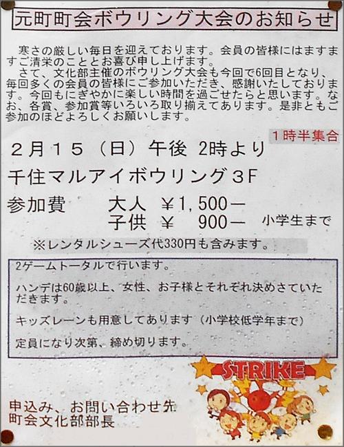 DSCN2949_003m.jpg