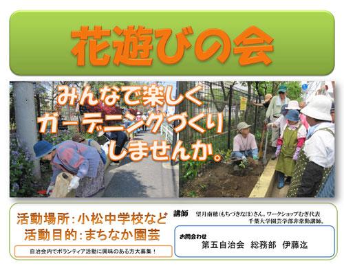 1007花遊び/新小岩5丁目.jpg