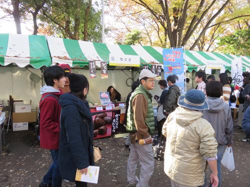 20141125_shinkoiwa5_003m.jpg