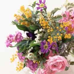 いろいろな花.jpg